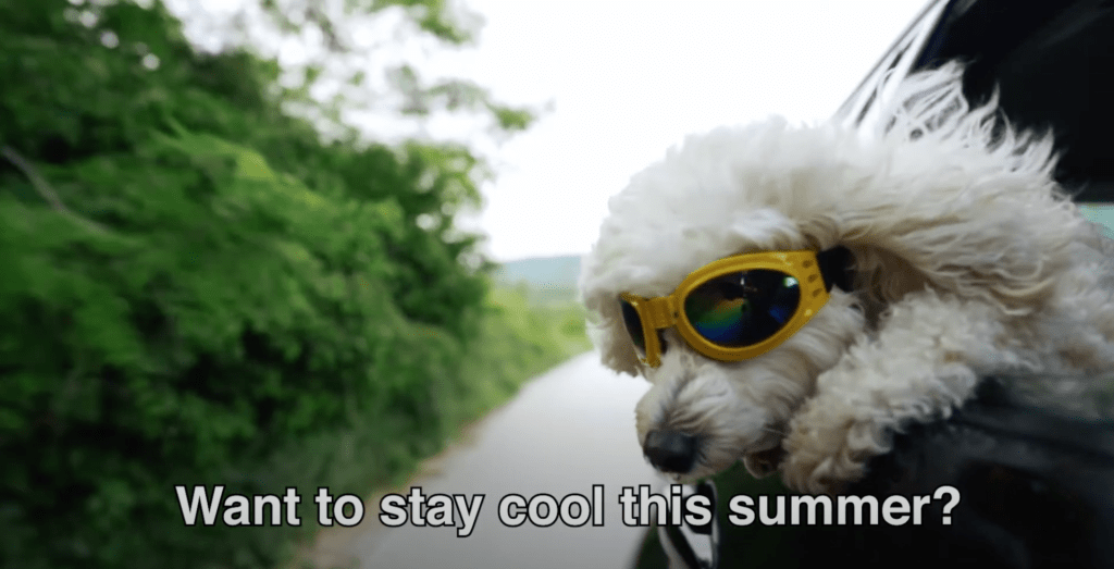 staying cool in summer.
