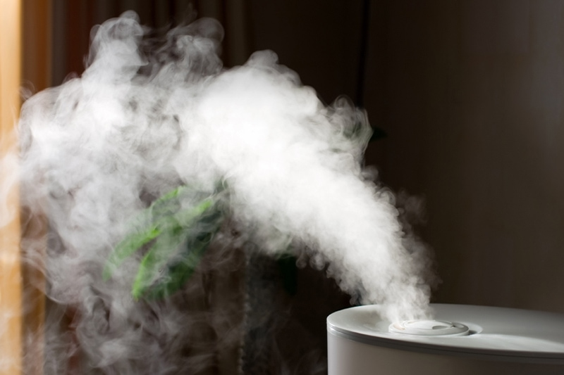 Water vapor coming out of a humidifier | Why Do I Need a Humidifier In the Fall? | Seattle, WA